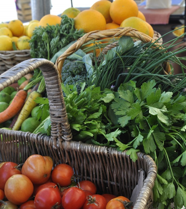 Rancho Bajamosal: fresh organic vegetables for a healthy Tijuana