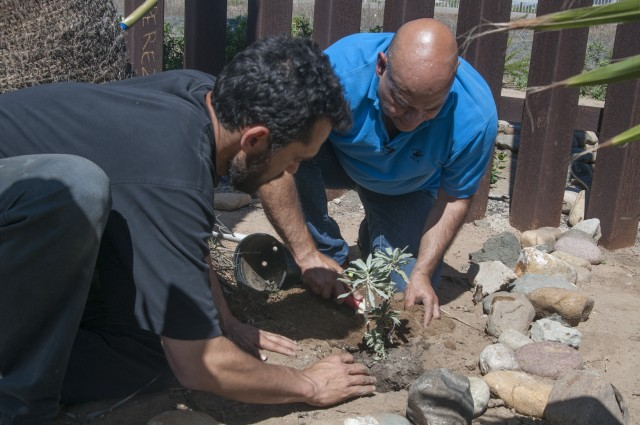 Binational Friendship Garden in Tijuana-San Diego gets some new salvia plants